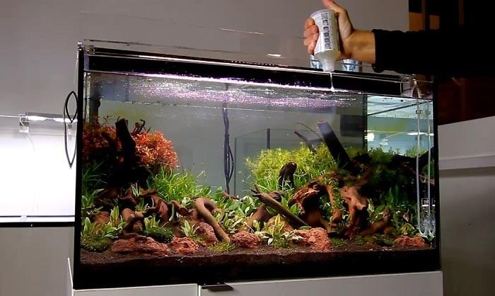 Akvaryumda Su Düzenleyici Kullanımı