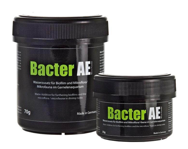 Glasgarten Bacter AE Karides Yemi